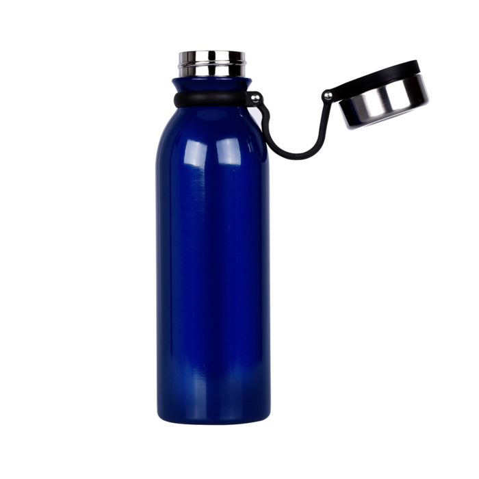 insulated water bottle with handle