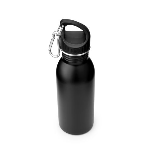 stainless steel water bottle with carabiner